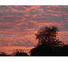 Peach Sky Photographic Print