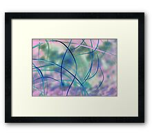Blowing in the wind - abstract 1 Framed Print