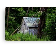 Forgotten in the Woods Canvas Print
