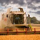 Bringing in the Harvest by Geoff Carpenter