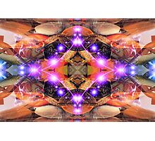 Alien Abstract  Photographic Print