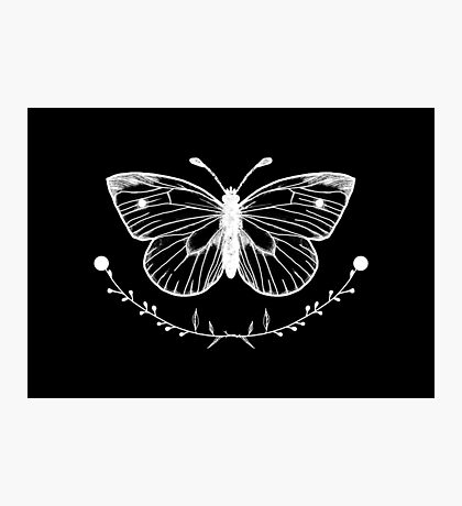 Butterfly Black Photographic Print
