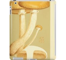 Illustrations of British Fungi by Mordecai Cubitt Cook 1891 V3 0391 AGARICUS  PHOLIOTA  AEGERITA iPad Case/Skin