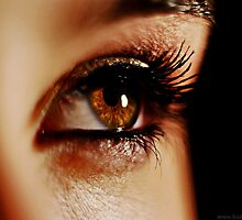 Brown Eyed Girl by lisabella