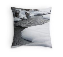 Winter on the North Fork Throw Pillow