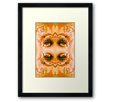 Eyes of a Mirror Framed Print