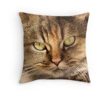 Furry Buddy Throw Pillow