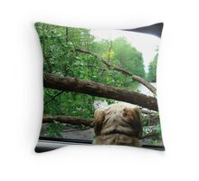 Danger Ahead Throw Pillow