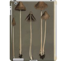 Illustrations of British Fungi by Mordecai Cubitt Cook 1891 V5 0085 AGARICUS  PSATHYRELLA  ARATUS iPad Case/Skin