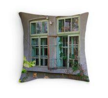Broken Windows Throw Pillow