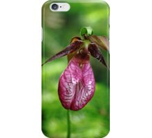 Showy Lady Slipper iPhone Case/Skin