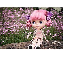 Summer Blythe in the garden - landscape version Photographic Print