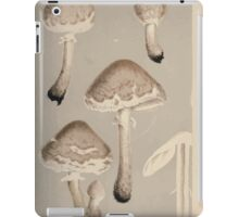 Illustrations of British Fungi by Mordecai Cubitt Cook 1891 V1 0113 AGARiCUS  LEPIOTA  EXCORIATUS iPad Case/Skin
