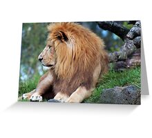 The King of Beasts Greeting Card