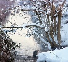 Heron Winter Scene by Tracy Riddell