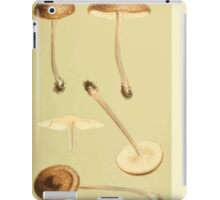 Illustrations of British Fungi by Mordecai Cubitt Cook 1891 V3 0259 AGARICUS  LEPTONIA  PLACIDUS iPad Case/Skin