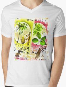 St Lucia Mens V-Neck T-Shirt