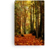 Fall Walk Canvas Print