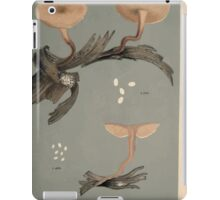 Illustrations of British Fungi by Mordecai Cubitt Cook 1891 V2 0189 AGARICUS  COLLYBIA  MIMICUS iPad Case/Skin