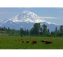 Country scene near Mt. Rainier  Photographic Print