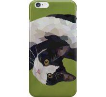Zorro is watching - Green iPhone Case/Skin