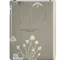 Illustrations of British Fungi by Mordecai Cubitt Cook 1891 V2 0369 AGARICUS  MYCENA  TENUIS iPad Case/Skin