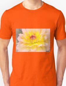Sugar Candy Unisex T-Shirt