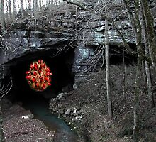"""""""Apparition of the Holy Seed at the Grotto of the Healing Waters"""" Third sighthing. by jwhimages"""