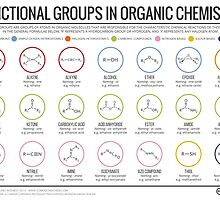 Functional Groups in Organic Chemistry by Compound Interest