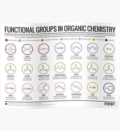 Functional Groups in Organic Chemistry Poster
