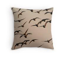 Brent geese at sunrise Throw Pillow