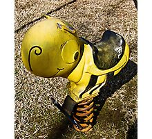lil' bee Photographic Print