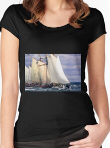 Stealing The Wind Women's Fitted Scoop T-Shirt