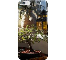 Bonsai Conservatory iPhone Case/Skin