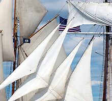 Simply Sails by JoeGeraci