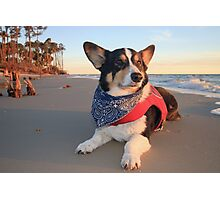 Cute Lifeguard on Duty Photographic Print