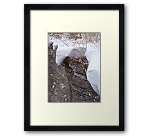 Blanketed in Snow Framed Print