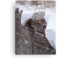 Blanketed in Snow Canvas Print