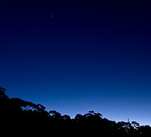 """Black + Blue - sunset Ku-Ring-Gai National Park Sydney"" by Bruce Perry"