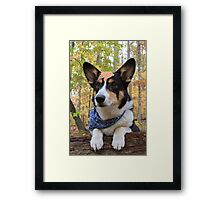 Explorer By Nature Framed Print
