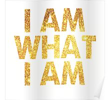 I am what I am lyric - John Barrowman (WHITE) Poster