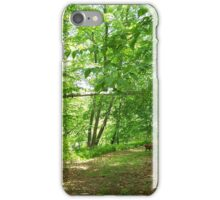 Easton Path  iPhone Case/Skin