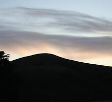 Sunset Silhouettes Bodega by nicholehastings