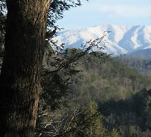 Great Smoky Mountains-GSMNP  by JeffeeArt4u