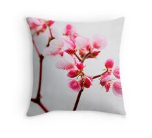 Why I Love Spring #2 Throw Pillow