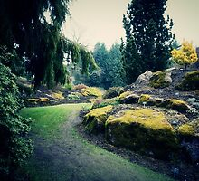 Moss Covered by LozMac