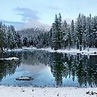 Clearing skies at Dana Meadows in Yosemite NP by Martin Lawrence