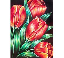 Tulips Red Photographic Print