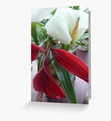 Red Jacobean Lily & White Lily. Greeting Card