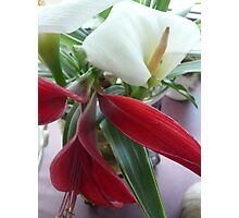 Red Jacobean Lily & White Lily. Photographic Print